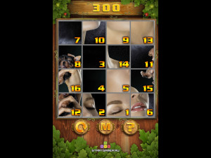 Онлайн игра Пазл Тег (PuzzleTag) (изображение №8)